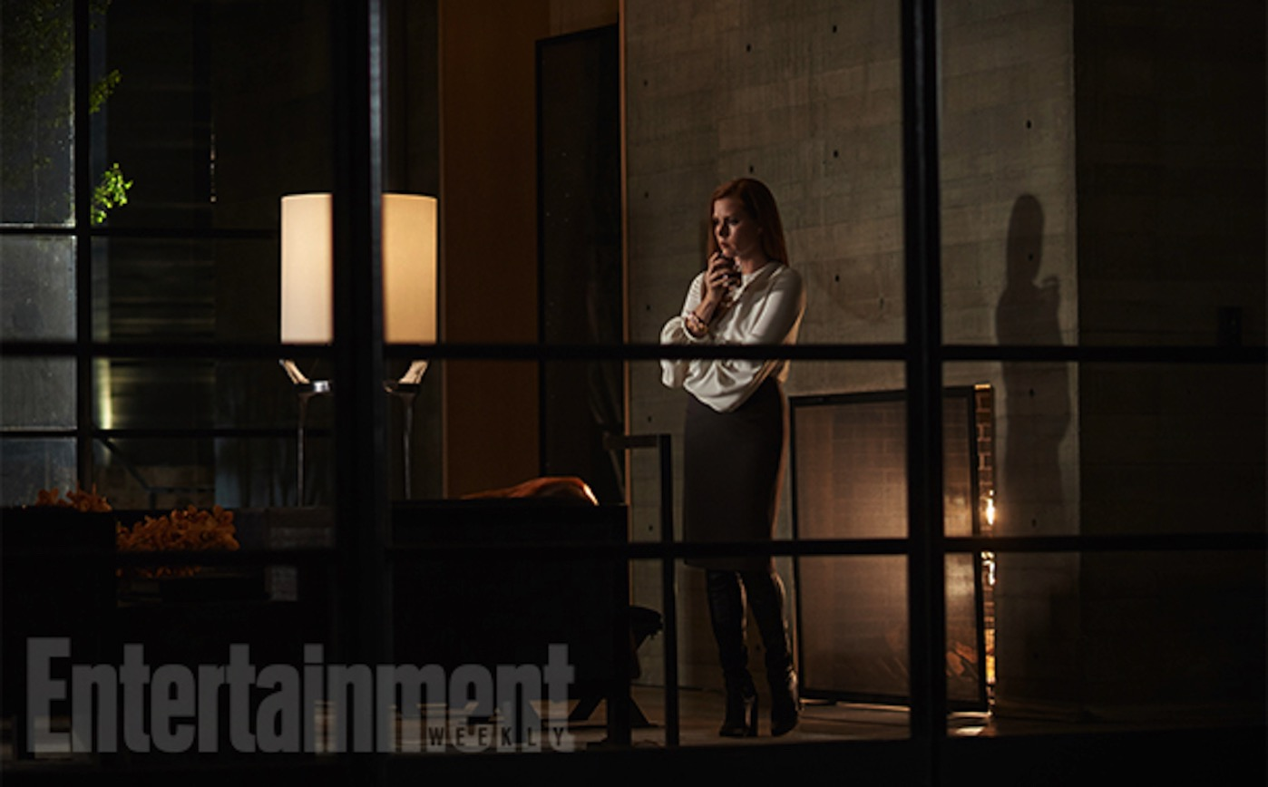 Nocturnal animals amy adams
