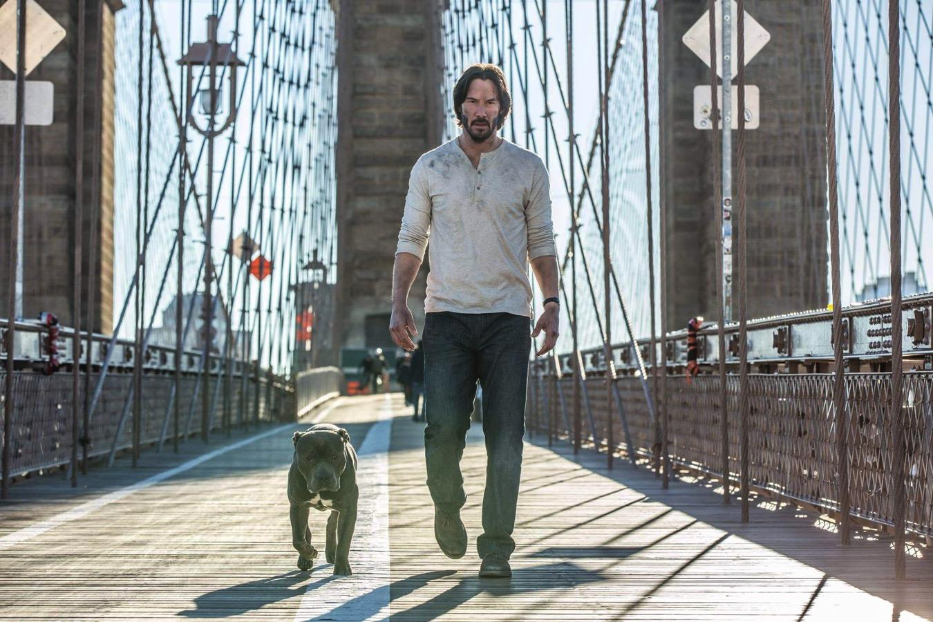 John wick 2 keanu reeves dog image